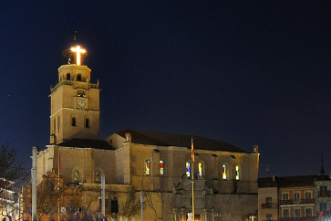 San Antolin's Collegiate and Tower